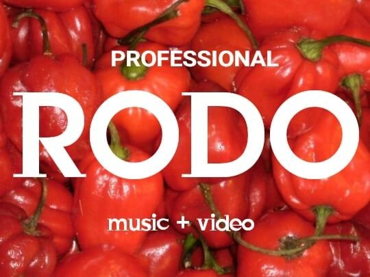 HOT MUSIC : Professional - Rodo
