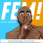 [Free Beat] Professional ft Davido – FEM flute version