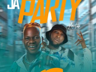 Dj Wise One x Samplus6ix -  Ja Party Mixtape